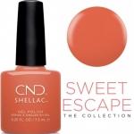 CND Shellac цвет Soulmate, 7,3 мл. (Коралловый) №307