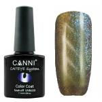 Гель лак магнитный CANNI Cat Eye Color Coat 7,3 мл №454