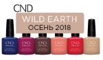 WILD EARTH CND SHELLAC