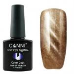 Гель лак магнитный CANNI Cat Eye Color Coat 7,3 мл  №284