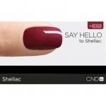 Дисплей-подставка для 12-ти флакончиков Shellаc